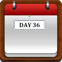 Day 36
