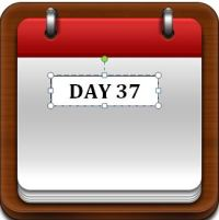 Day 37