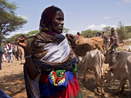 Ethiopian_woman_Loko_who_gathers_and_sells_firewood_to_feed_her_family[1]